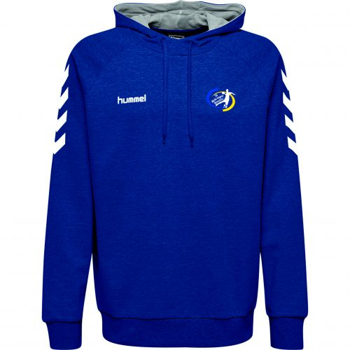 Team-Hoody Kinder